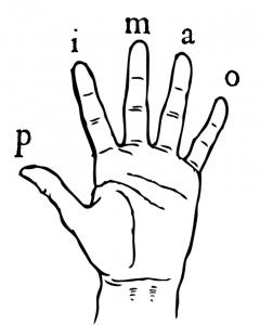 Les doigts de la mains par accordeondiatonique.fr