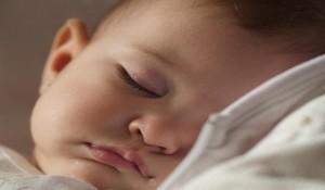 Accordéon diatonique en sommeil.